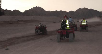 quad safari