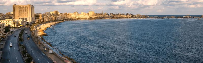Alexandria City Tour